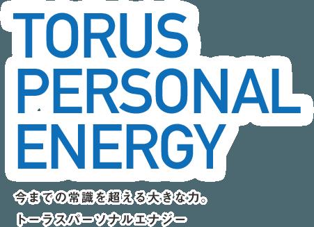 TORUS PERSONAL ENERGY 今までの常識を超えたトーラスパーソナルエナジー