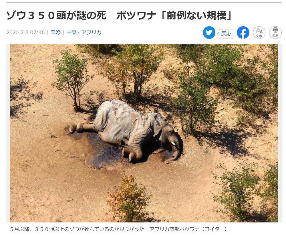 200707 ゾウが謎の死 350頭以上